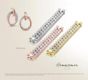 Hammerman – HB2